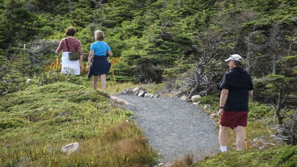 Hiking Archives Louisbourg Nova Scotia